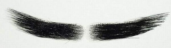 Augenbrauen, schwarz